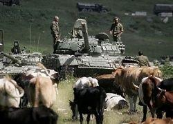 Страны третьего мира не спешат с оценками войны на Кавказе