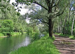 Количество природных парков в Москве увеличится в 3 раза