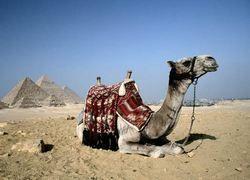 Пирамиды огородили от мошенников и туристов