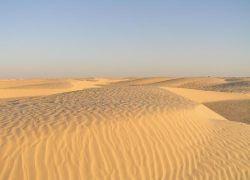 В Сахаре найдены останки кладбища 5000-летней давности