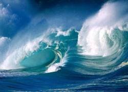 """В мировом океане все больше \""""мертвых зон\"""""""