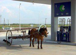 Подешевевший бензин не заставил американцев сесть за руль
