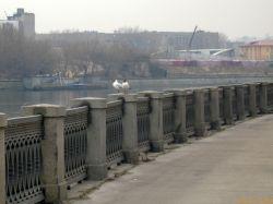 В Москве мотоциклист сбил пятерых пешеходов