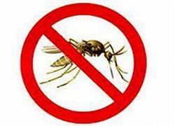Средства от комаров опасны для здоровья