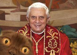 Папе римскому предложили сделать шапку из его кота