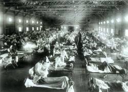 «Испанка» вылечит от птичьего гриппа