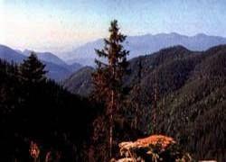 Природный парк Грузии – во власти огня