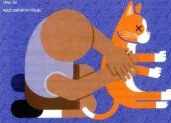 Инструкция по эксплуатации кошки