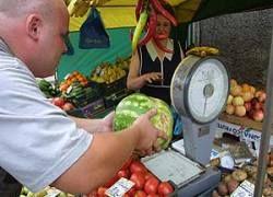 Московские перекупщики стали выдавать себя за дачников