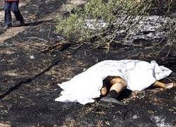 Авиакатастрофа в Мадриде: это чудо, что есть оставшиеся в живых