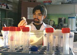 Два миллиарда человек в мире инфицировано вирусом гепатита В