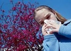Климатические изменения вызывают аллергические приступы