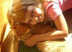 Домашние животные создают предрасположенность к храпу