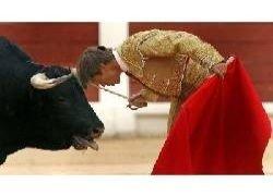 Тореадор проделывает смелые трюки с разъяренным быком