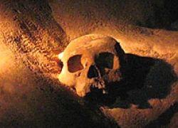 Ученые определили ДНК по скелету человека, жившего в бронзовом веке