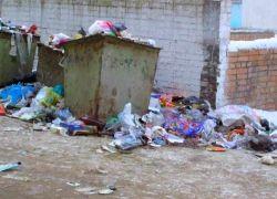 Половина пищи превращается в отходы, не успев попасть на стол
