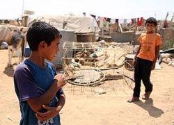 Бедуины перестанут кочевать по Святой земле