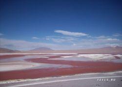 Красное озеро Лагуна-Колорадо в Боливии
