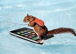 Издевательство над iPhone продолжается