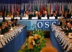 ОБСЕ против раздачи российских паспортов в Осетии и Абхазии