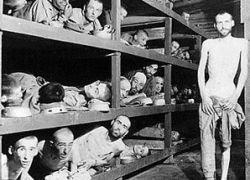 Главный аргумент в информационных войнах - геноцид