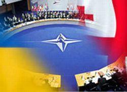 Грузия и Украина станут членами НАТО?