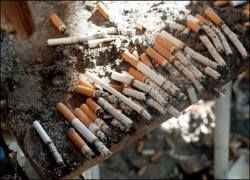 Сенсация: Литвиненко умер от курения?