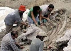 В Испании найден новый вид динозавра