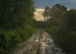На ремонт дорог из российского бюджета выделили 20 млрд. рублей