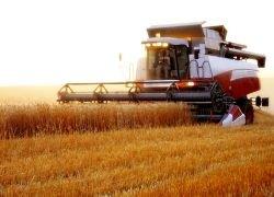 Россия сможет прокормить 33 миллиарда человек