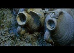 В Египте появится подводный музей