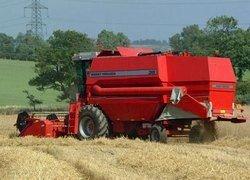 Финансовый кризис затронул сельское хозяйство России