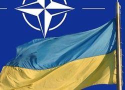 Украинская демократия может задержать вступление страны в НАТО