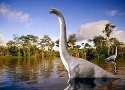 Динозавры-гиганты подросли без пережевывания пищи