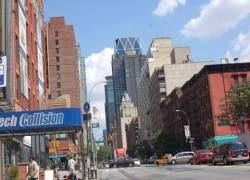 В Нью-Йорке открылся зоомагазин-инсталляция