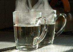 Остановить простуду помогут голод и горячая вода
