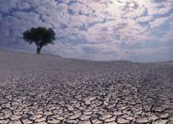 Глобальное потепление грозит распространением опасных болезней
