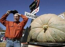 Американец вырастил гигантскую 700-килограммовую тыкву