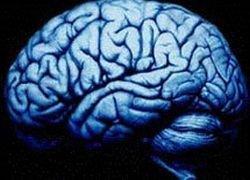 Ученые разгадывают тайны человеческого мозга