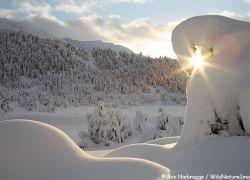 Очень яркие фотографии Аляски