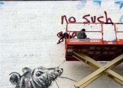 Гигантские крысы атакуют Нью-Йорк?