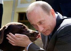 Иванов подарил собаке Путина ошейник с ГЛОНАСС