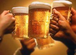 Студенты-генетики придумали полезное пиво
