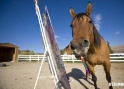 Самая знаменитая лошадь-художник