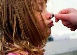 Ученые выяснили, как запах формирует воспоминания