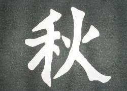 В Китае появятся домены, записанные иероглифами