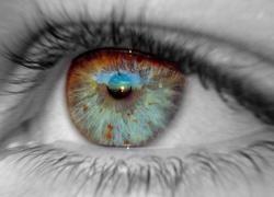 Призвание человека можно определить по радужной оболочке его глаза