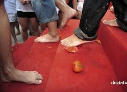 Бойня помидорами в Китае