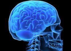 7 способов улучшить свой мозг