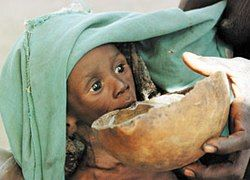 В современном мире голодают 75 млн людей